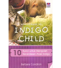 How To Raise An Indigo Child